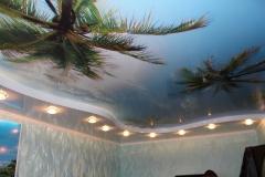 Потолок с фотопечатью 3