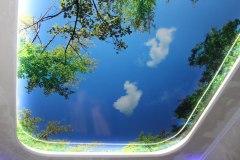 Потолок с фотопечатью 8