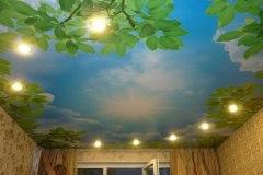 Потолок с фотопечатью 9